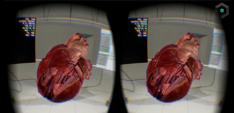 הדמייה במציאות מדומה VR של מבנה הלב